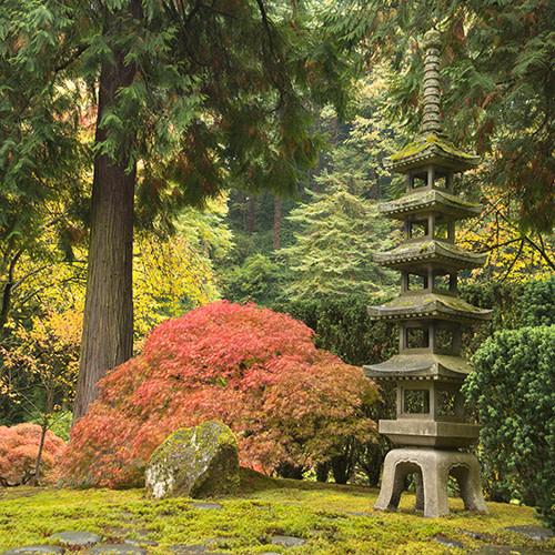 Portland Japanese Garden Says Sayonara Until Spring Portland