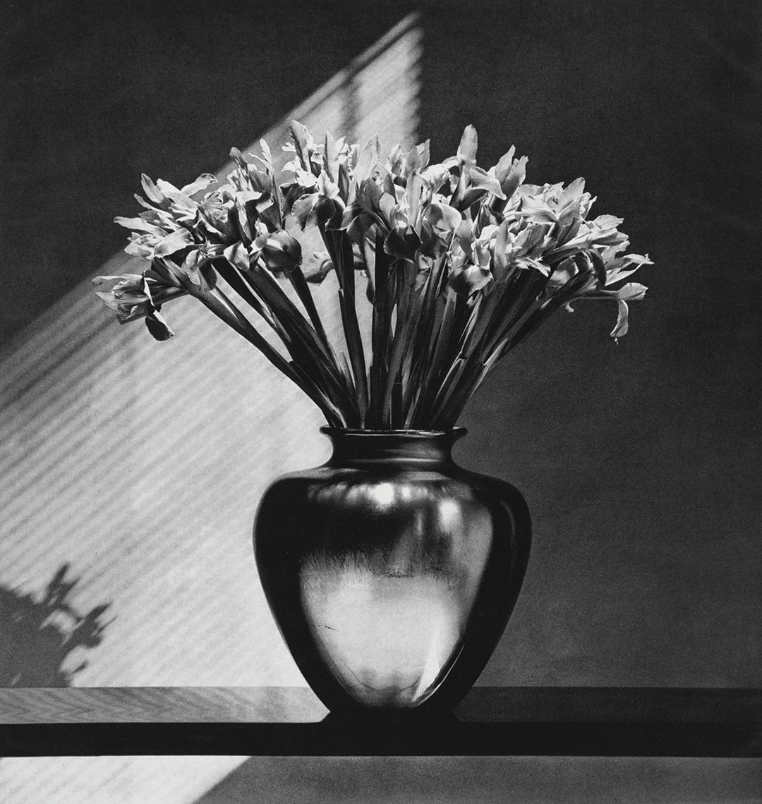 Robert Mapplethorpe and Patti Smith: Flowers, Poetry and Light is coming to Selby Gardens next year