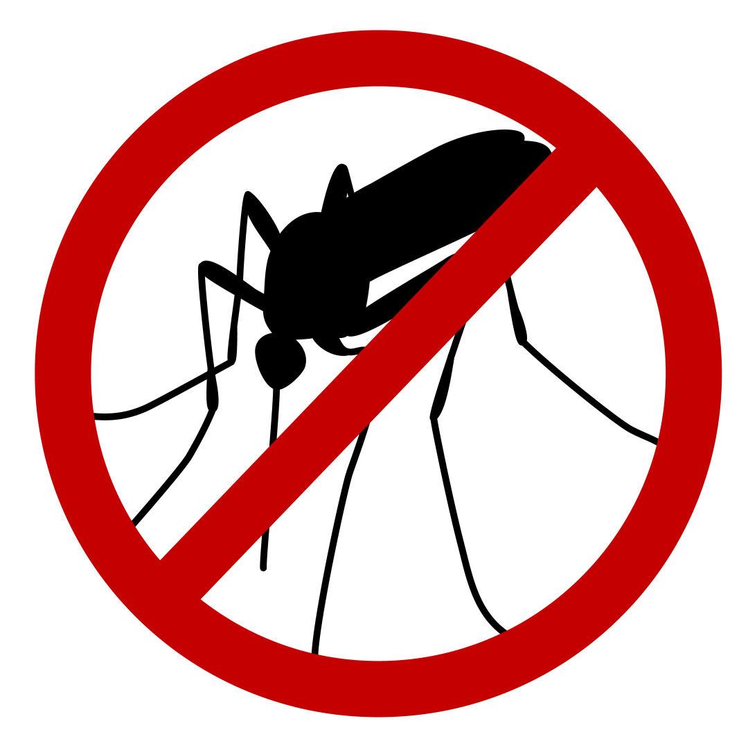 Mosquito vkarl2