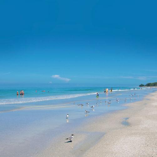Beach 53 copy pdflgj