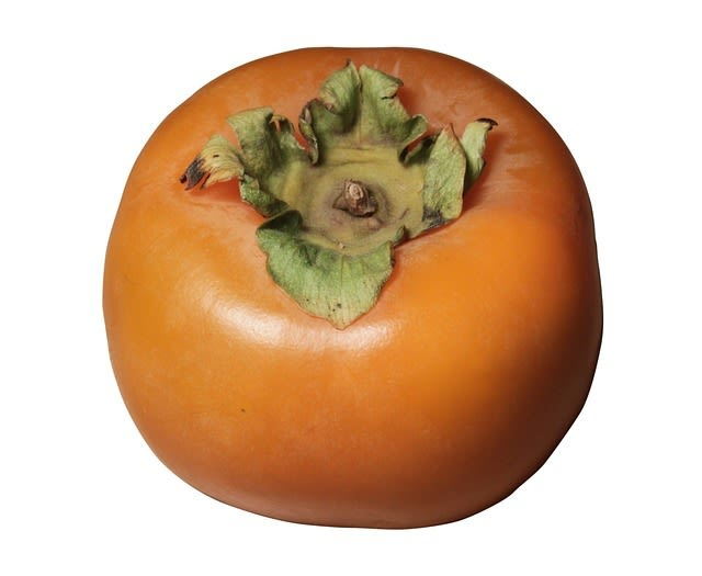 Persimmon photo 2 from pixabay xbscxx
