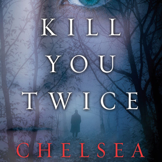 Kill you twice book v18mdq