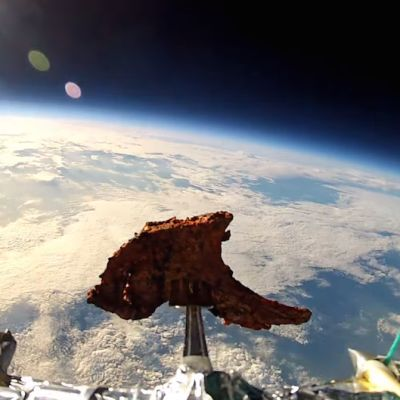 Tandoori lamb chop in space idttmr