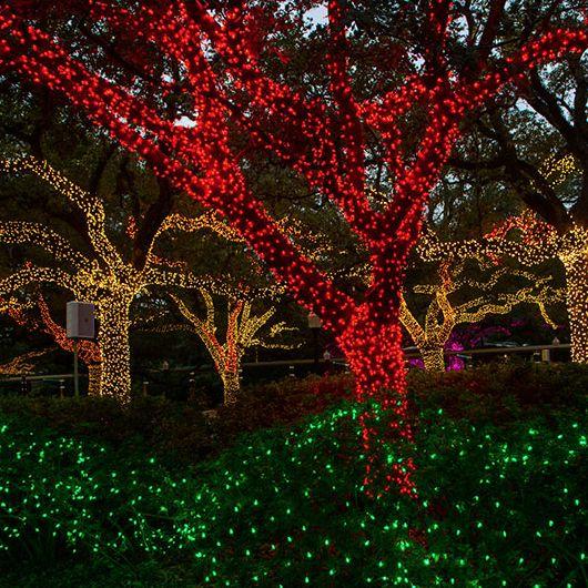 Zoo lights ozmfuy