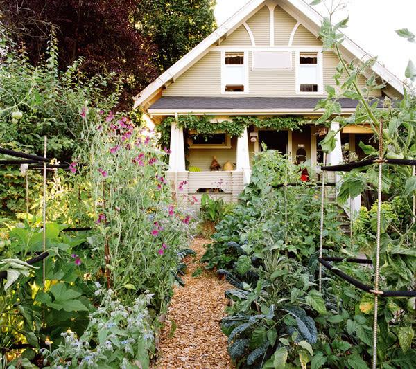 North portland garden v9ix8l