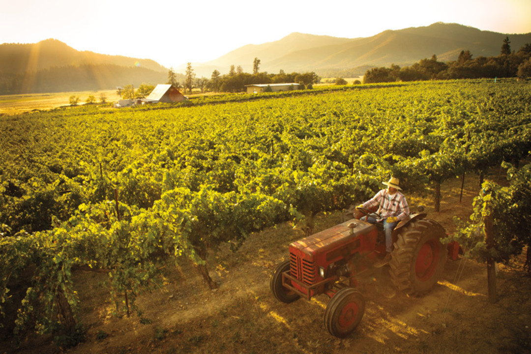 Southern Oregon S Wild Wine Country Portland Monthly