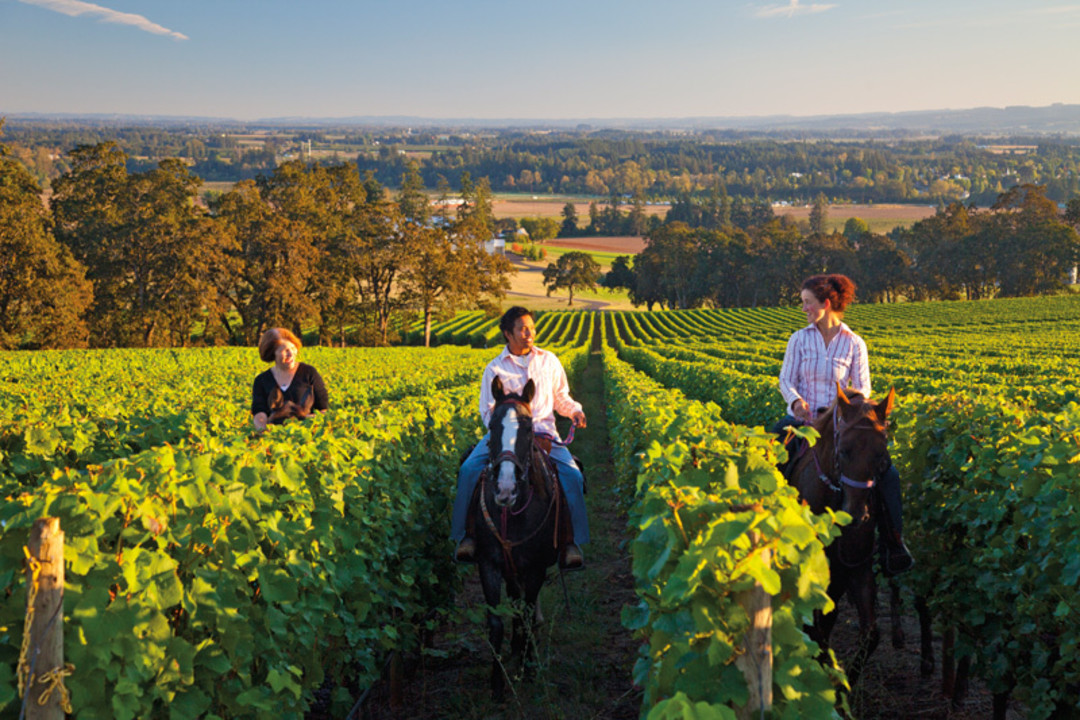 Northwest Wine Country Weekends Portland Monthly