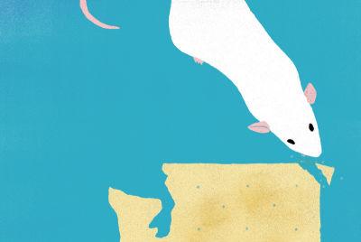 113 of mice and gene splicers s31zlt