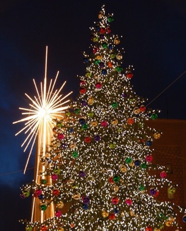 Seattle Christmas Tree Lighting: 'Tis The Season: 10 Holiday Events To Plan For