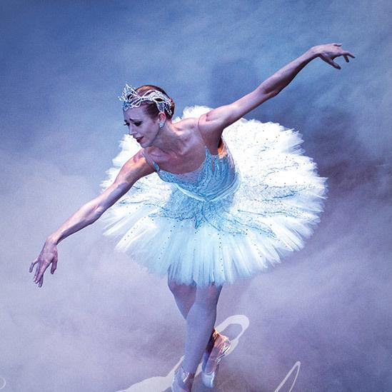 Swan ywpzhk