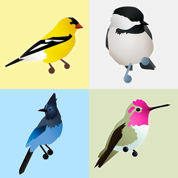 Bird opener pjrnne
