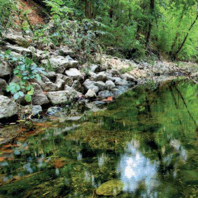 2 rummel creek v2uuqy