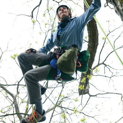 Treeclimbing1 ronhnt