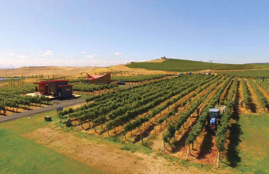 Alexandria nicole winery vrtfxd