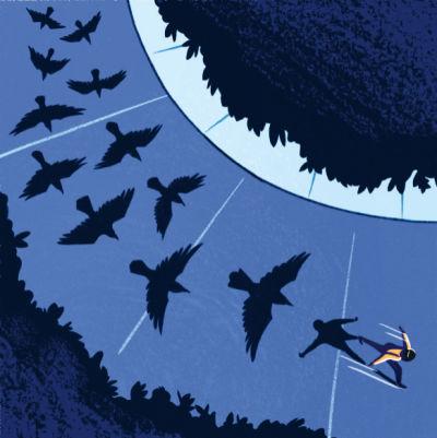 Crows seattle len9op