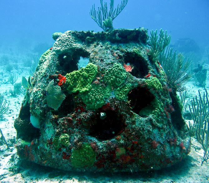 An Eternal Reefs reef ball
