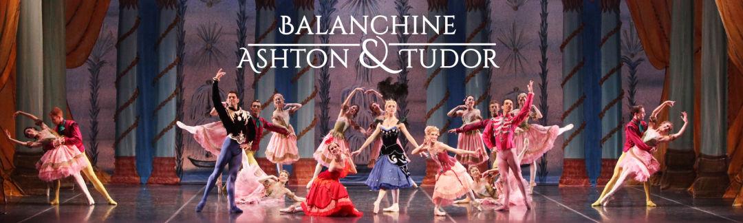 Sarasota ballet gala performance wqie7i