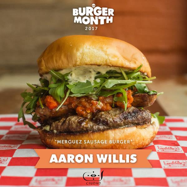 Bm17 aaron willis burger 2lr tnzhwj