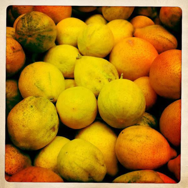 Kumquats hqqrkd