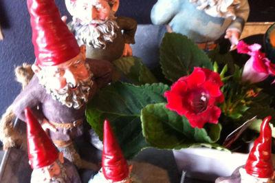 Gnomes at digs zmcozw