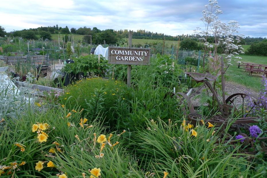 Community gardens empmym
