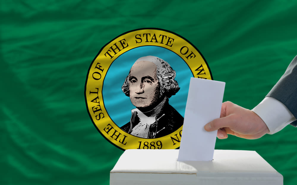 vote in front of Washington flag