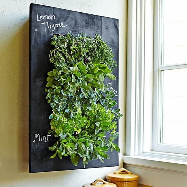 Living herb wall williams sonoma ceq7o0