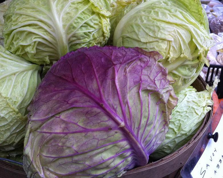 Wintermarket savoycabbagefore qza1a4