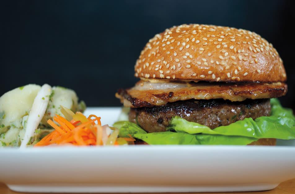 Biwa burger jt6b41