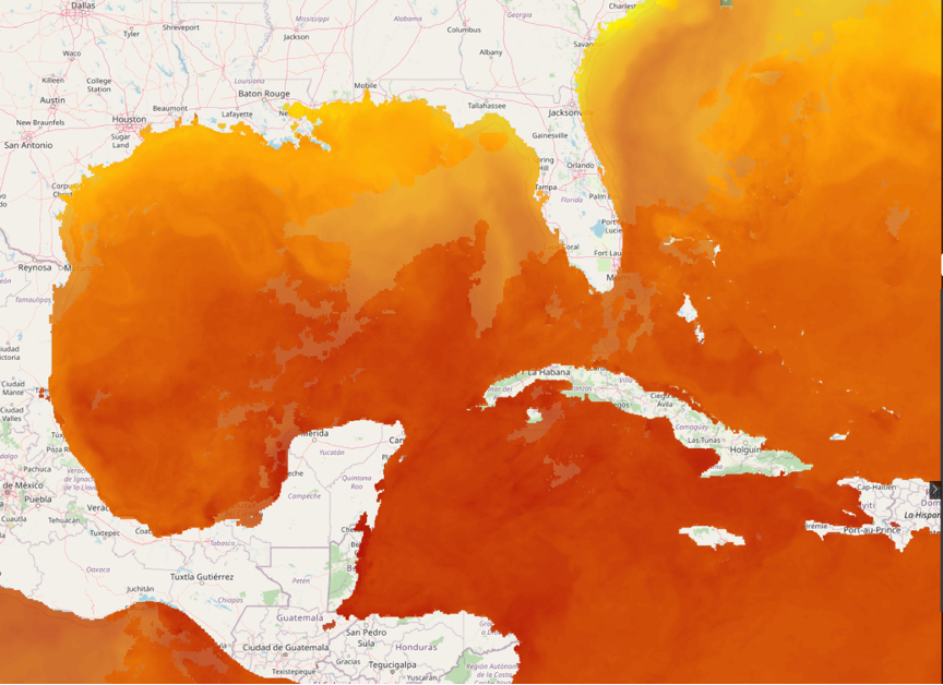Today's satellite sea surface temperatures (SSTs).