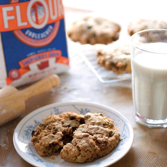 0109 113 dish cookie etyh0e