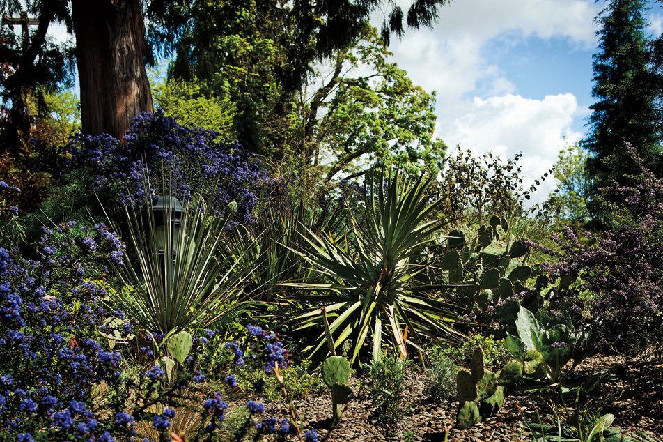 Garden by kennedy school a2xd4x