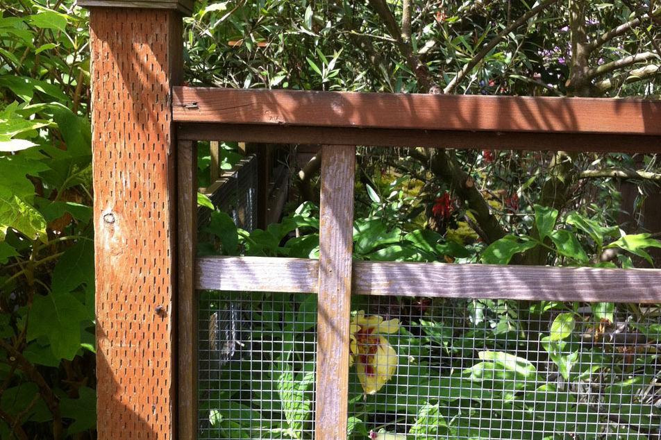 Fence 09 fevmdc
