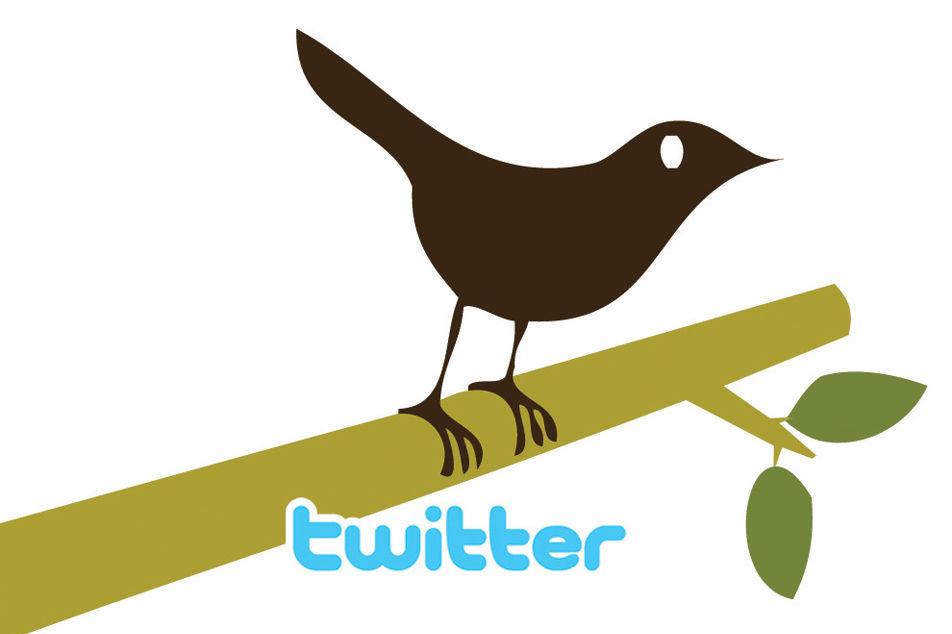 0309 asking price ilo bird ffucfv