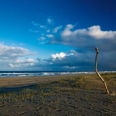 0805 pg078 coast 1beach a6ws6v