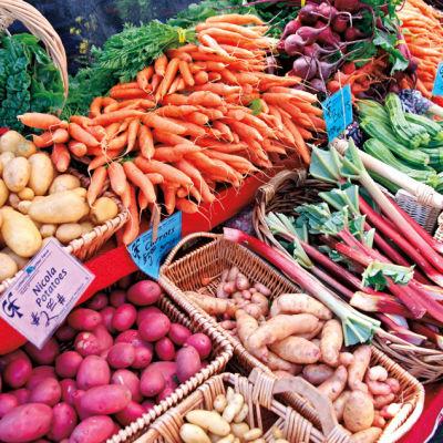 Beaverton farmers market tbz5t0