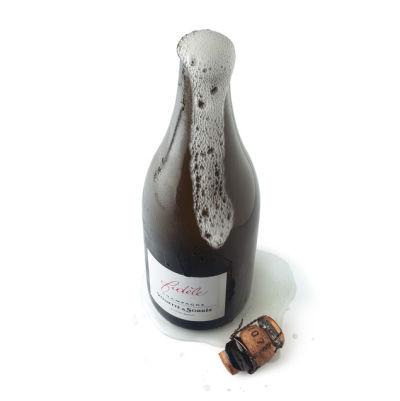 Champagne bottle fizz qp3wzx