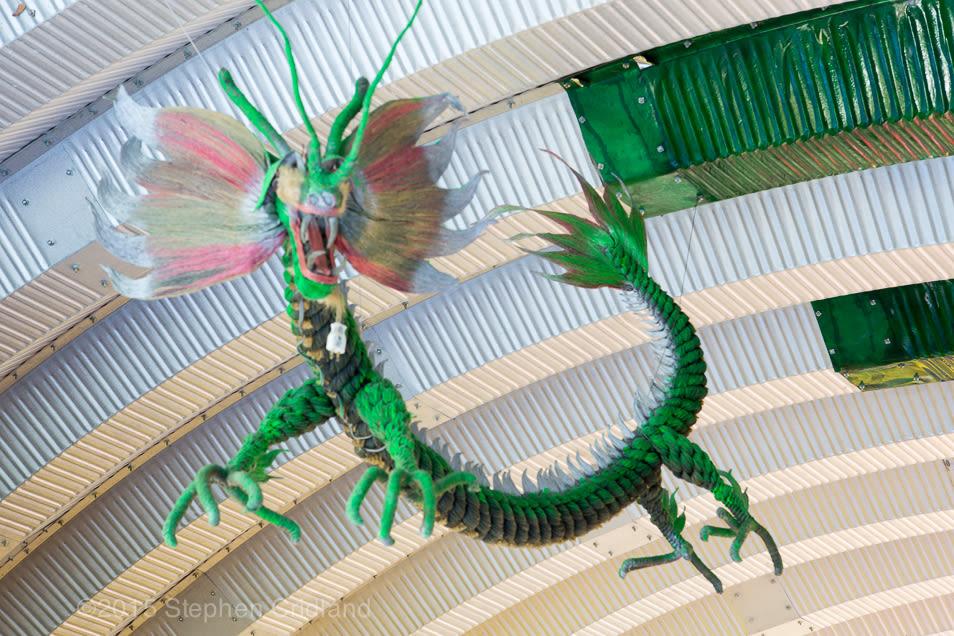 Dragon gvynt7