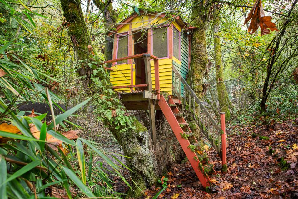 Treehouse mxhn7o