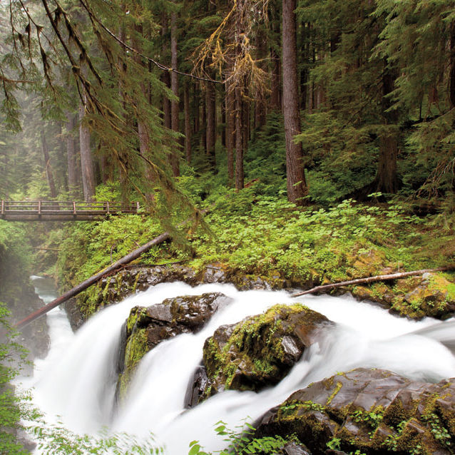Olympic national park river cpqxee