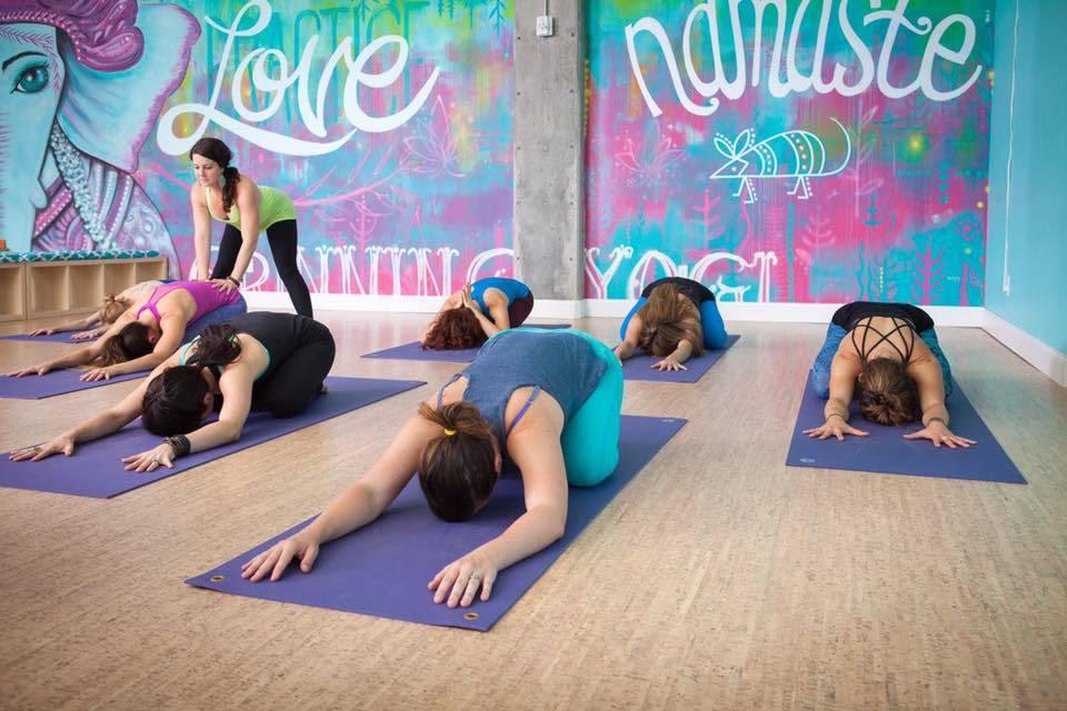 Grinning yogi 5  w3dzqv