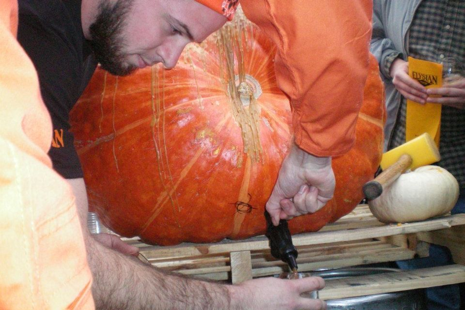 Elysian pumpkin nq9dy4