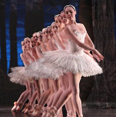 Houston ballet zz1sfy