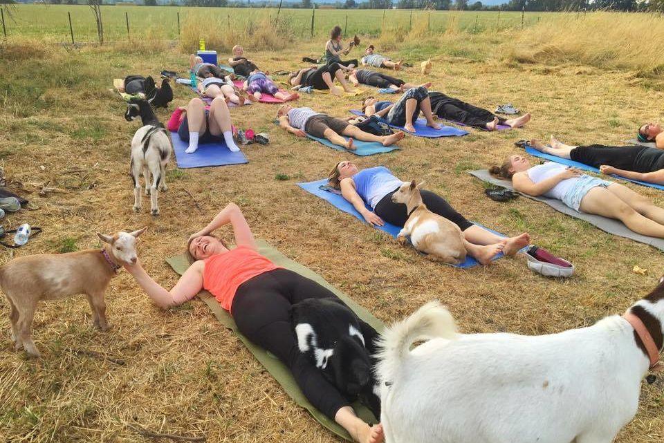 Yoga 7 hxhsec