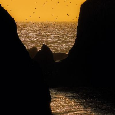0805 pg075 coast cover1 b17aeb