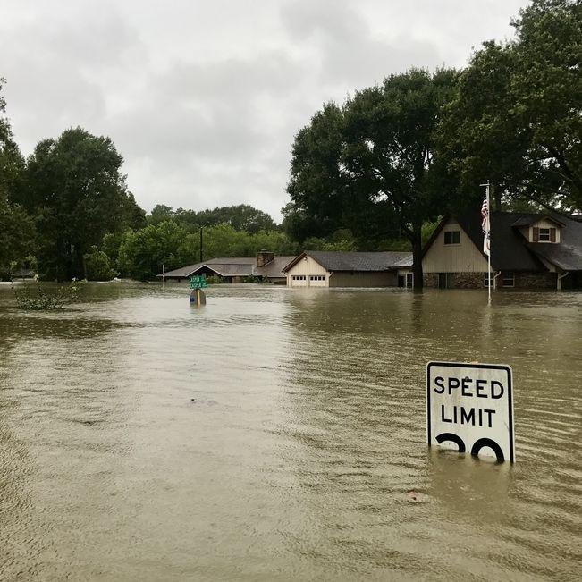 Flood gqkwqk