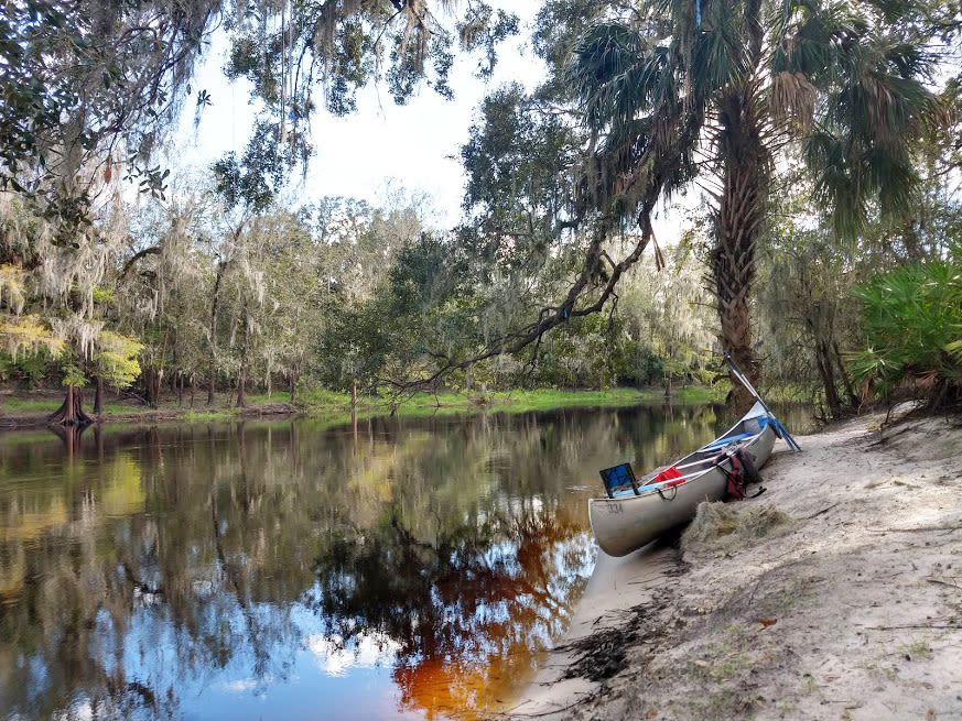 The Peace River offers an idyllic view of Florida nature.