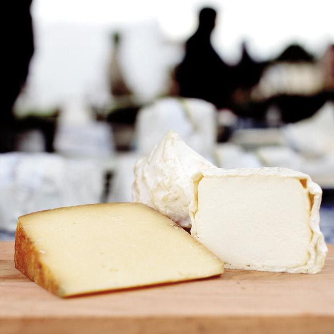 Scio cheese z1felt