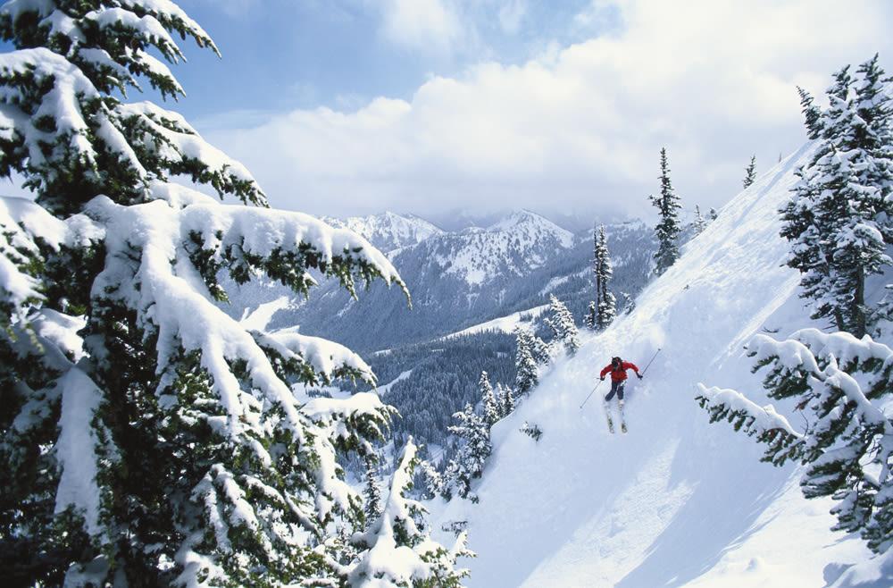 1212 skiing crystal mountain nyxwvl