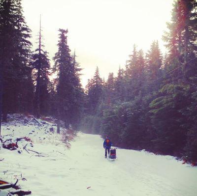 Skiing jvxqr6